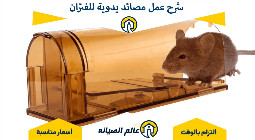 شرح عمل مصائد يدوية للفئران